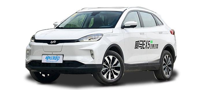 2019 威马汽车 威马EX5 300 Lite探索版 白色 实拍 头图