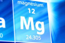 镁离子电池