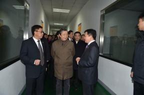 国务院副总理马凯调研指导国轩高科动力电池产业发展纪实