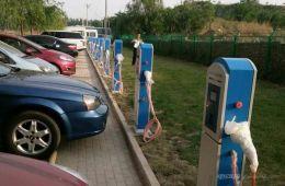 南京发布新能源车推广方案 加强充电桩建设