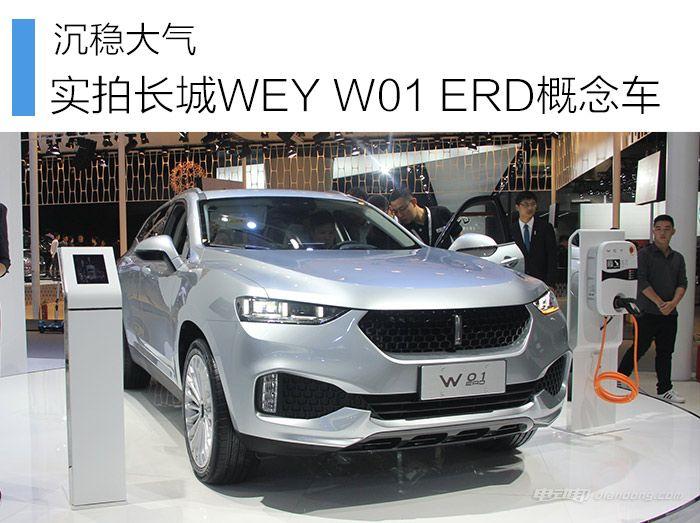 WEY-W01-ERD概念车