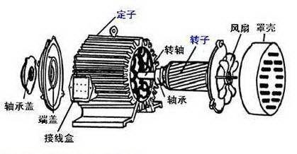异步电动机