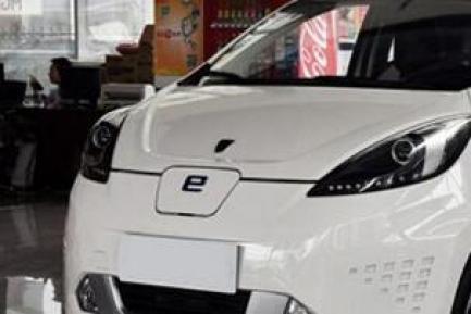 低速微型电动汽车,低速微型电动汽车质量