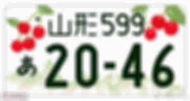 93b5c4bbly1frk2g06ri6j20go08u752