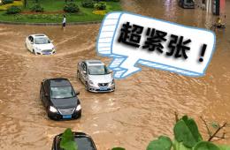 就算暴雨四面来袭 新能源车主可以高枕无忧?