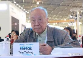 杨裕生院士: 增程式将是未来汽车主力
