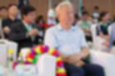 国家新能源汽车创新工程专家组组长  王秉刚先生出席发布会