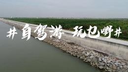 全新一代起亚K3 PHEV广州经典影视珠三角自驾寻迹行动