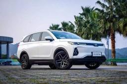 威马汽车 2019 年累计销量达到 16876 辆